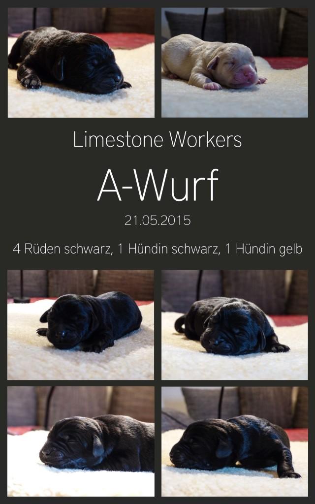 A-WURF_22052015